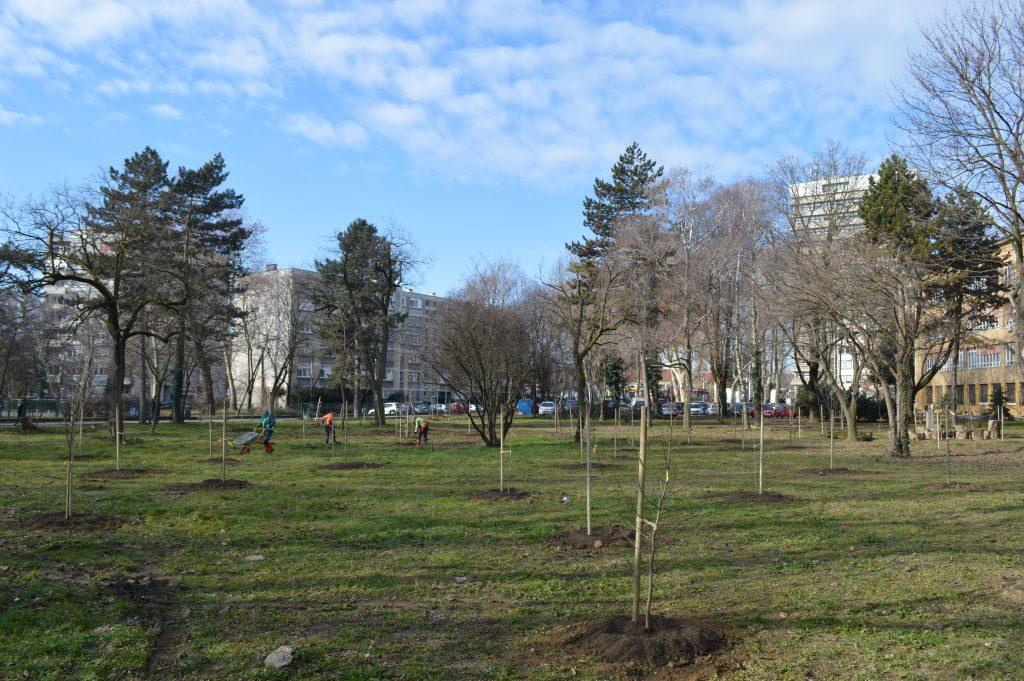 Park-šuma UFZG